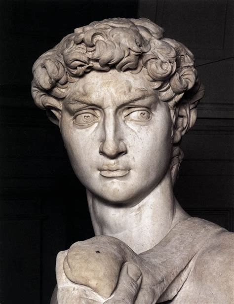 michelangelo david sculpture michelangelo s david bust