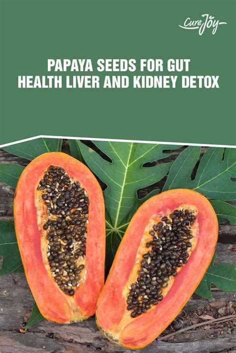 Gut Liver Detox by Papaya Seeds Benefits For Gut Health Liver And Kidney