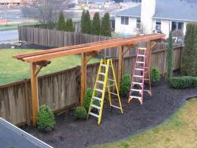 Trellis Design Plans by Best 25 Hops Trellis Ideas On Pinterest Great Ideas