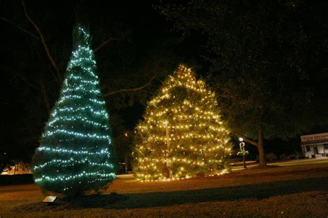 foley to remove traditional christmas tree in downtown