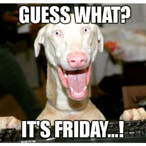Tgif And Guess What by Happy Friday Meme That Will Make Best Weekend Betameme