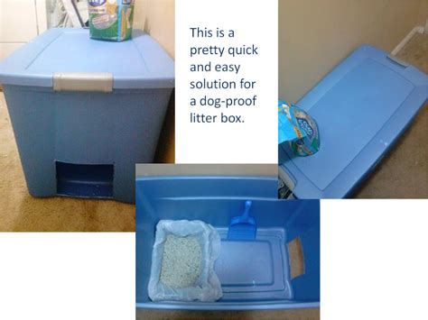 litter box for dogs easy and solution for proof litter box litter box box and