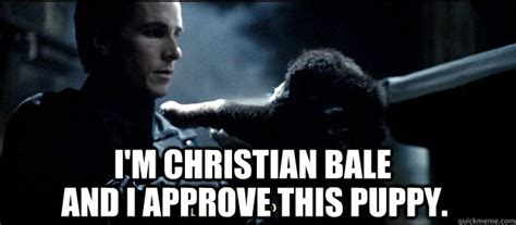 Christian Bale Meme - i m christian bale and i approve this puppy christian