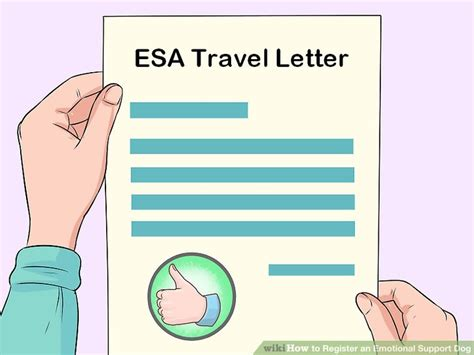 how to register your as an emotional support how to register an emotional support مقهى كل العرب