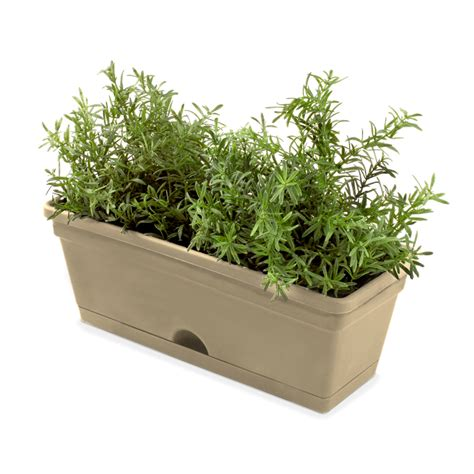 Bunnings Vertical Garden Whites Vertical Garden Mix N Match Herb Pot Latte