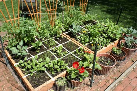 Small Vegetable Garden Ideas 12 Inspiring Square Foot Gardening Plans Ideas For Plant Spacing The Self Sufficient Living