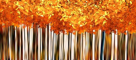 Fall Autumn Background · Free image on Pixabay Fall Nature Wallpaper