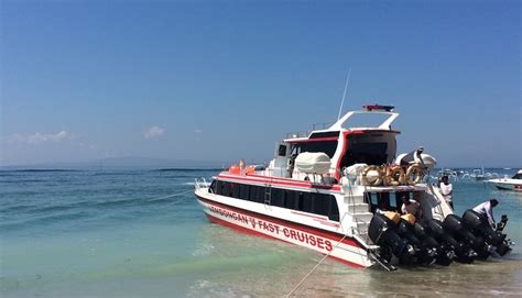 rocky fast cruises  lembongan traveller