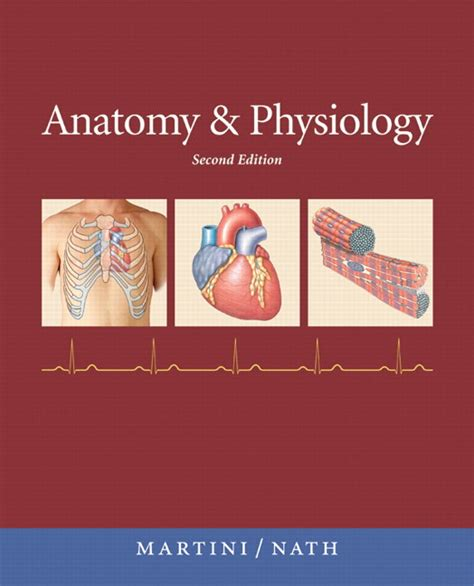 human anatomy physiology 2nd edition books pearson custom library anatomy and physiology