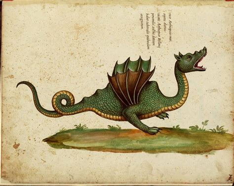 C Est Formidable In Praise Of Cultural Dragons The