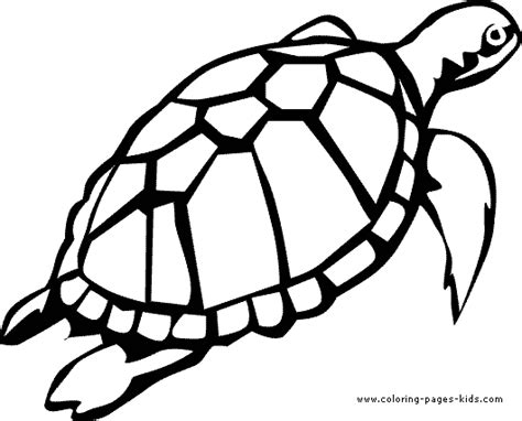 coloring page sea turtle free coloring pages of sea turtle
