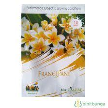 Benih Kangkung Bangkok Lp1 cara membuat tanaman hidroponik anggrek bibitbunga