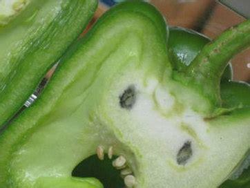 imagenes graciosas que parecen otra cosa 25 graciosas comidas que parecen otra cosa im 225 genes