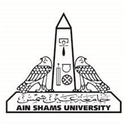 faculty of law english section ain shams university experience