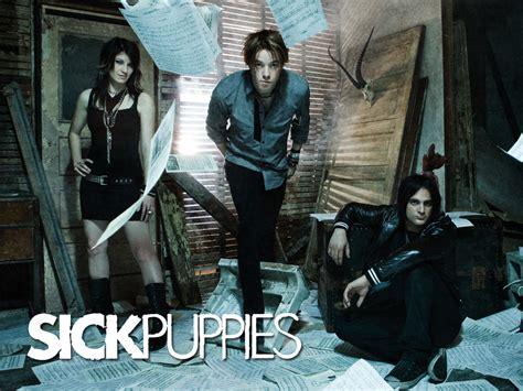 sick puppies sick puppies sick puppies wallpaper 7552720 fanpop