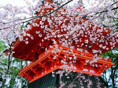 wallpaper animasi japan natural scene of kyoto city japan xcitefun net