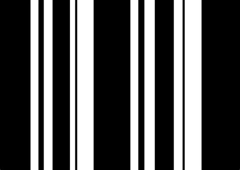 Black And White Striped by Black And White Stripes Pictures To Pin On