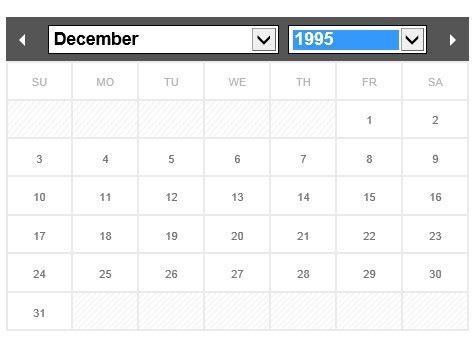 ionic datepicker tutorial flexible and multi language jquery calendar datepicker