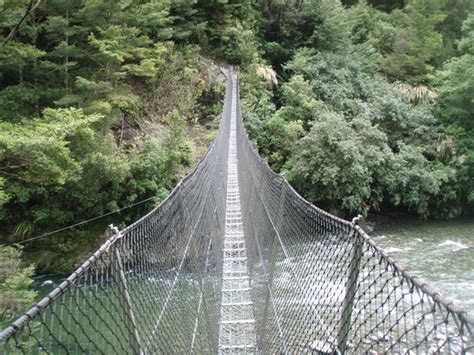 Swing Bridge New Zealand Trer