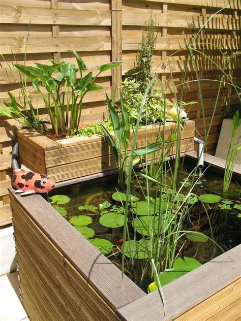 bac poisson jardin un petit bassin de jardin ou terrasse des galets blancs pour le fond et les paniers un