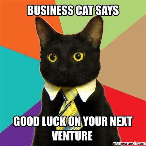 Good Luck Cat Meme - business cat good luck