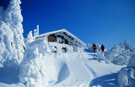 imagenes de invierno reales paisajes nevados simplemente inolvidables