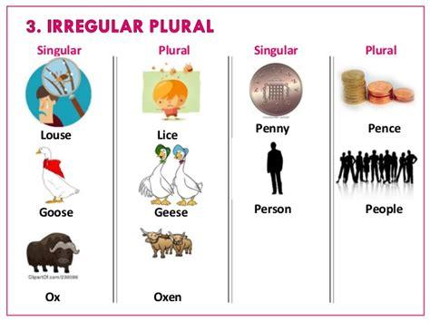 Shelf In Plural by Nb1 Singular And Plural