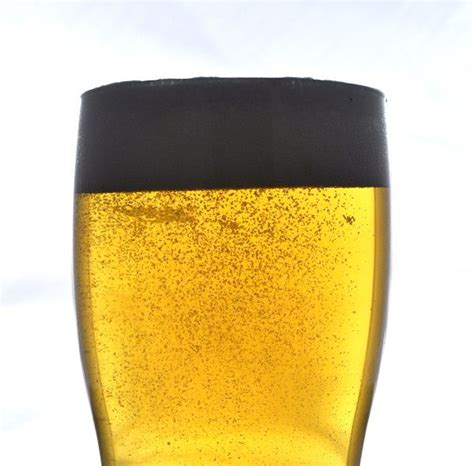 american light lager recipe 13648 best images about beer home brewing on pinterest
