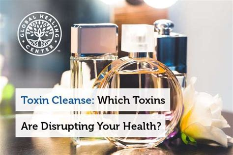 Toxic Detox Challenge toxin cleanse which toxins are disrupting your health