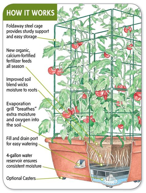 how do self watering planters work growing gardening how to make a self watering container