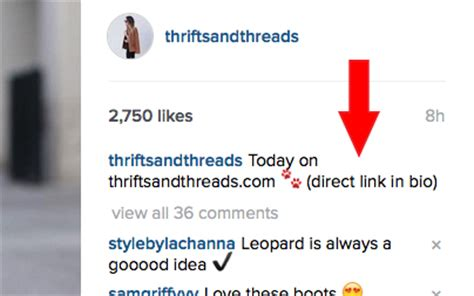 bio instagram link top 10 instagram faqs thrifts and threads