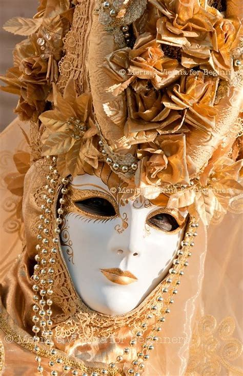 Masker Vienna Di Indo 17 best images about venetian carnival masks costumes on