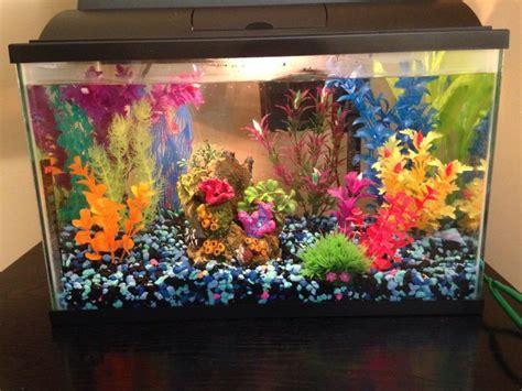Colorful Fish Tanks Small Colorful Fish Tank The Tank Fish