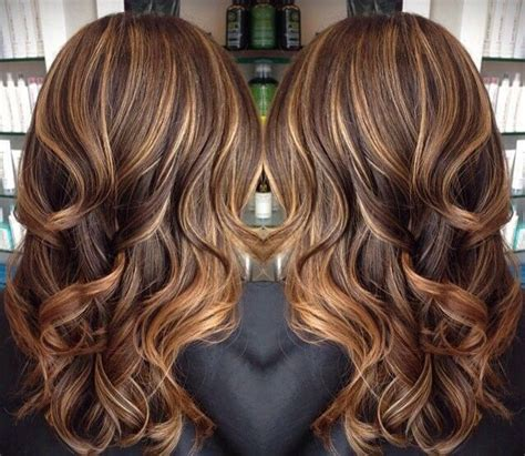 tortoise hair color 1000 ideas about tortoise hair on brown to