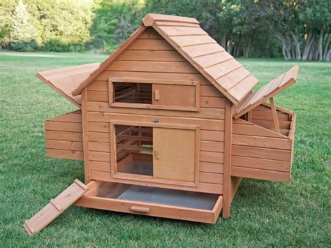 backyard chicken coops plans the 10 best cheap chicken coops zacs garden