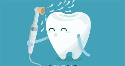dental cleaning the impact of skipping your bi annual teeth cleanings your dental health resource