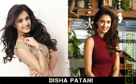 dhoni movie actress disha patani photos of actress disha patani from m s dhoni the untold