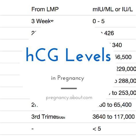 calculator level 44 normal hcg levels related keywords normal hcg levels