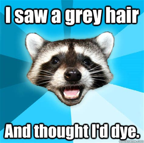 Lame Pun Coon Meme - i saw a grey hair and thought i d dye lame pun coon