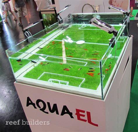 Football Aquarium Decorations aquael built a fabulous soccer football aquarium reef builders the reef and marine