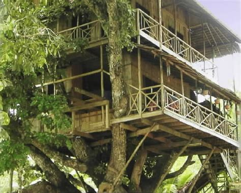 treehouse vacations treehouse resorts retreats and rentals