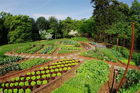 white house vegetable garden waterfront views by the flickr pool greater greater washington