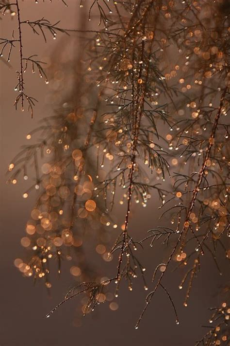 luxury christmas decorations ideas
