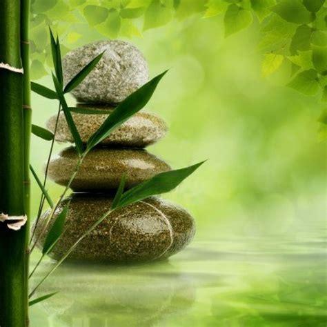 imagenes de zen aquamation an environmentally friendly alternative to