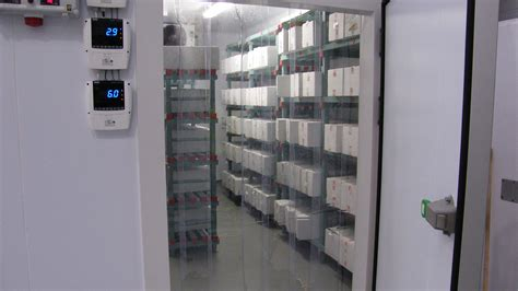 the cold room cold room installation fridges direct commercial fridge storage solutions in ruthin