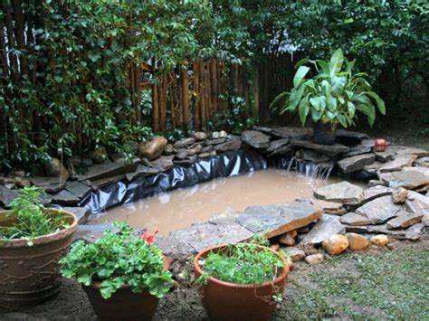 How To Make Pond In Backyard by Outdoor Pond Installation Hgtv