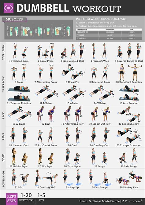 fitwirr s poster for dumbbell exercises 19 x 27 get