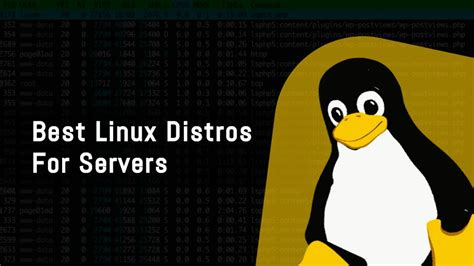 best linux server distro 7 best linux server distros you need to use 2018 edition