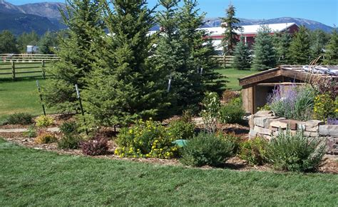 baldwin s landscaping in lodge montana 187 photo gallery