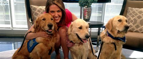 lutheran comfort dogs comfort dogs travel to dallas to provide support to slain